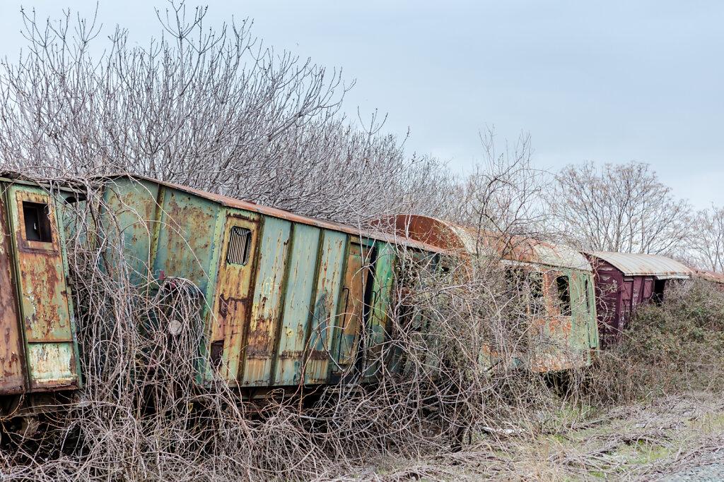 Der letzte Zug (The last train)